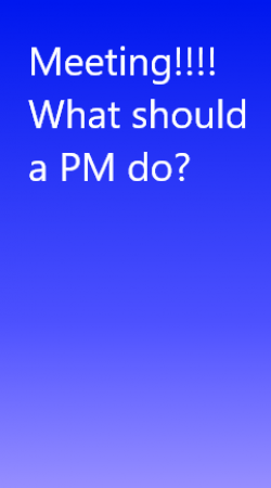 What should a PM do in meeting?